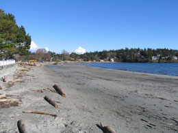 Cadboro Bay Beach
